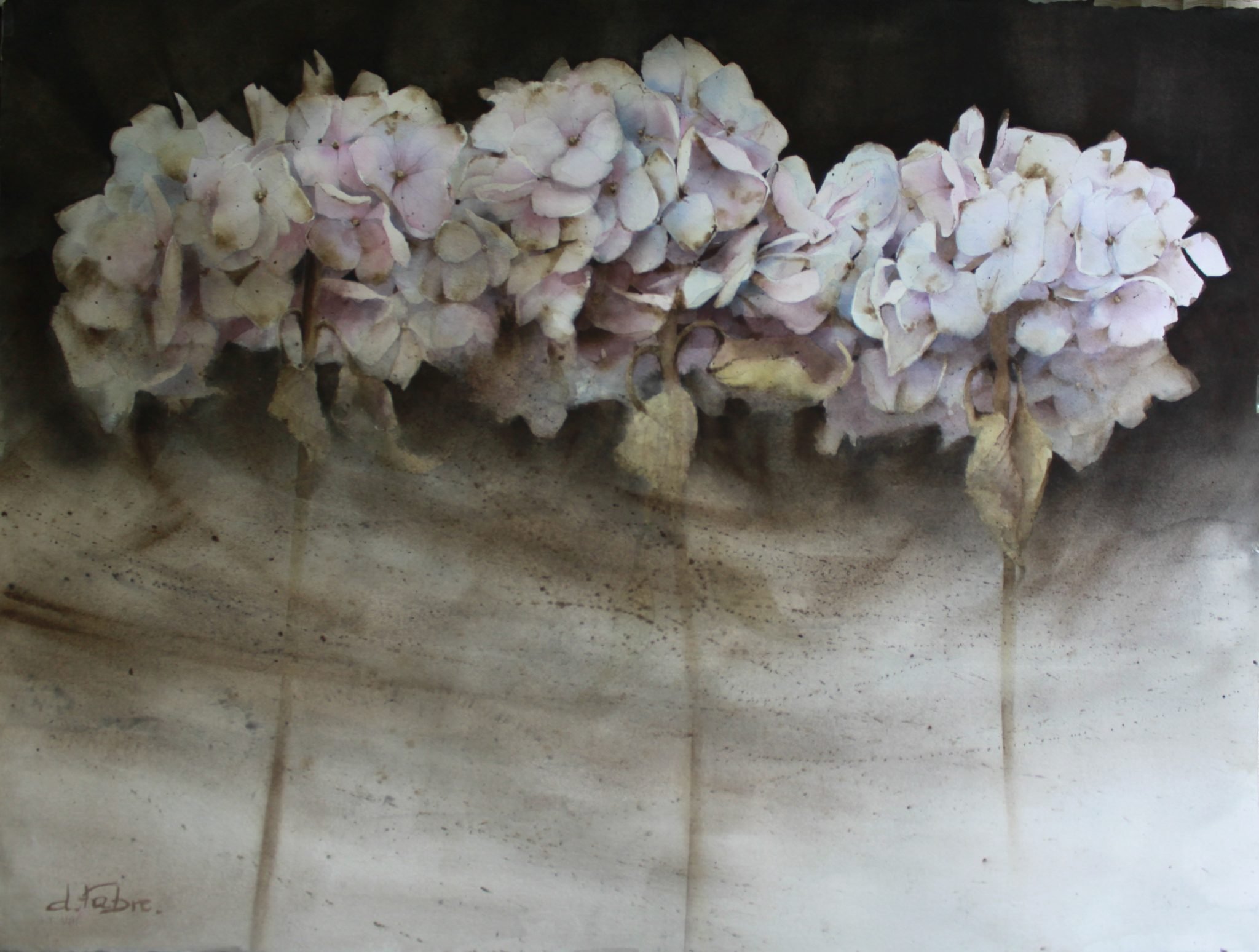 Hortensia d'automne - 56x76cm